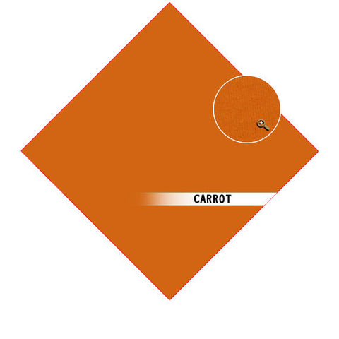 COLOR: Carrot