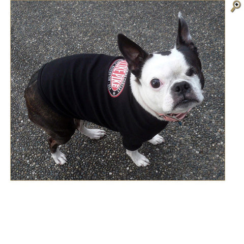 The Pike Doggie Tee on our beloved Derby!