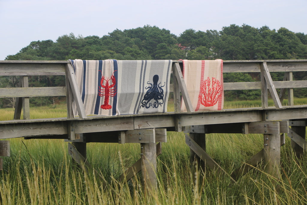 favorite photography spots plum island eco throw