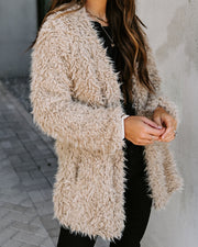 Familiar Feelings Pocketed Faux Fur Jacket - Oatmeal view 5