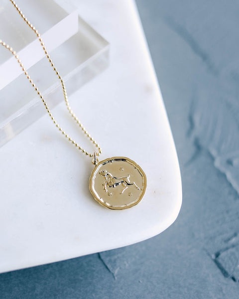 MEGHAN BO DESIGNS - Zodiac Necklace - Aries