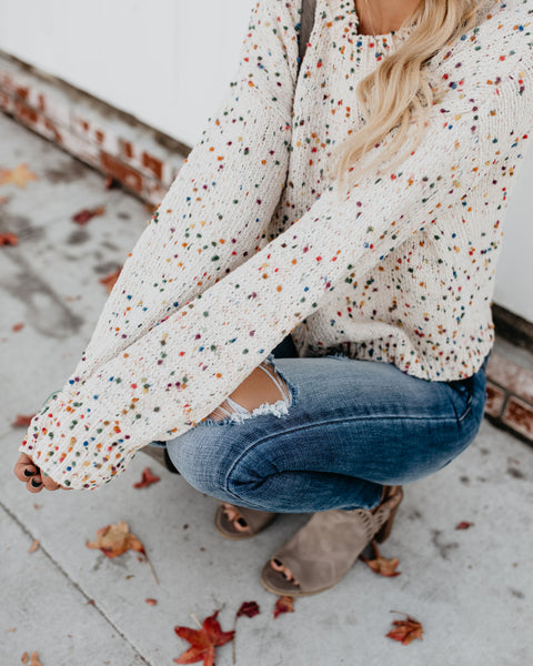 PREORDER - Birthday Cake Remix Speckled Knit Sweater