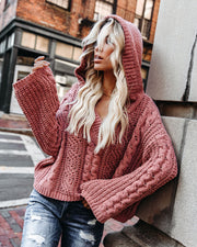 Safe And Sound Hooded Chenille Sweater - Canyon Clay