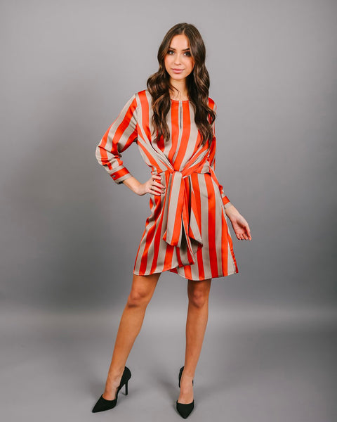 In Good Company Striped Dress - FLASH SALE
