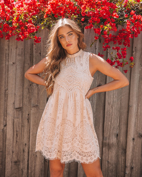 Tea Party Lace Dress - Taupe