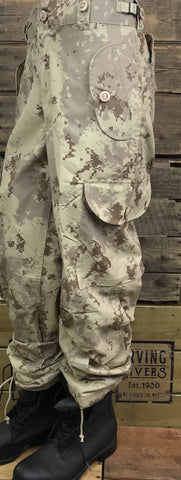Digital Desert Cargo Camo Pants