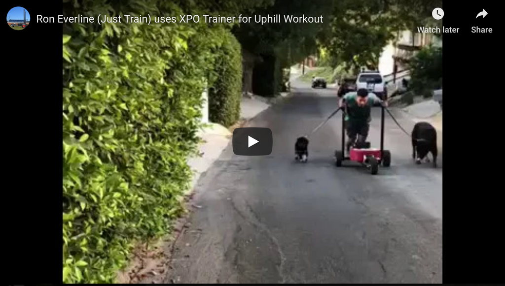 Ron Everline (Just Train) uses XPO Trainer for Uphill Push Sled Workout