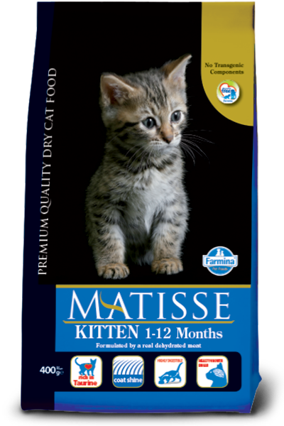 MATISSE - Kitten Chicken & Rice