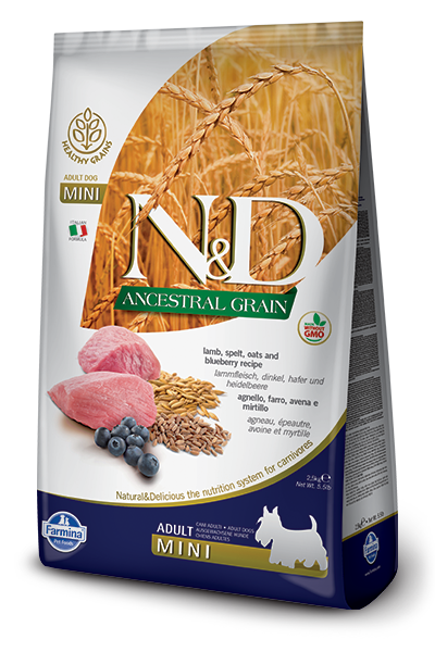 N&D - Low Grain Adult Mini Lamb & Blueberry