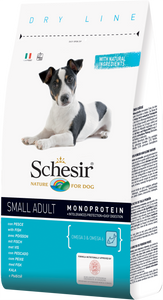 SCHESIR - Small Adult Fish