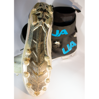 "SIGNED Cam Newton Cleats from ""All In With Cam Newton"""