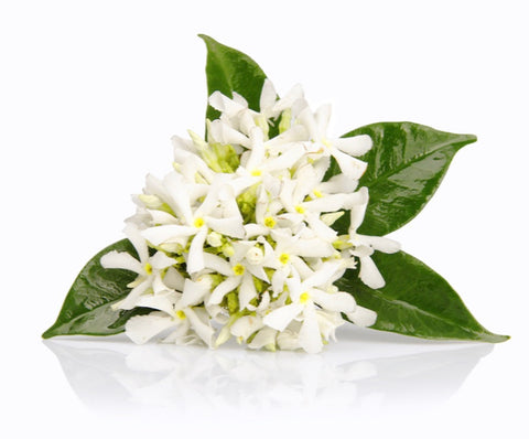 No 24. Neroli Absolute  - 100% pure natural botanical extracts