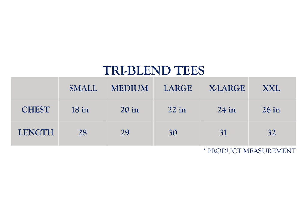 Bluetick Stripe Triblend Tees