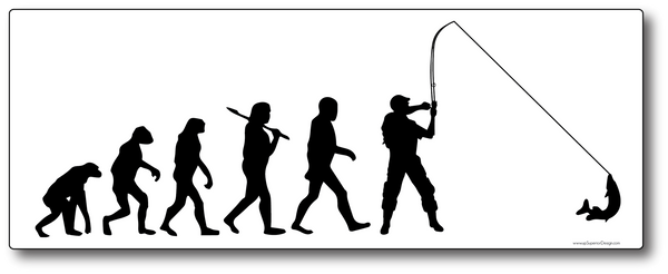 Evolution Fishing Sticker