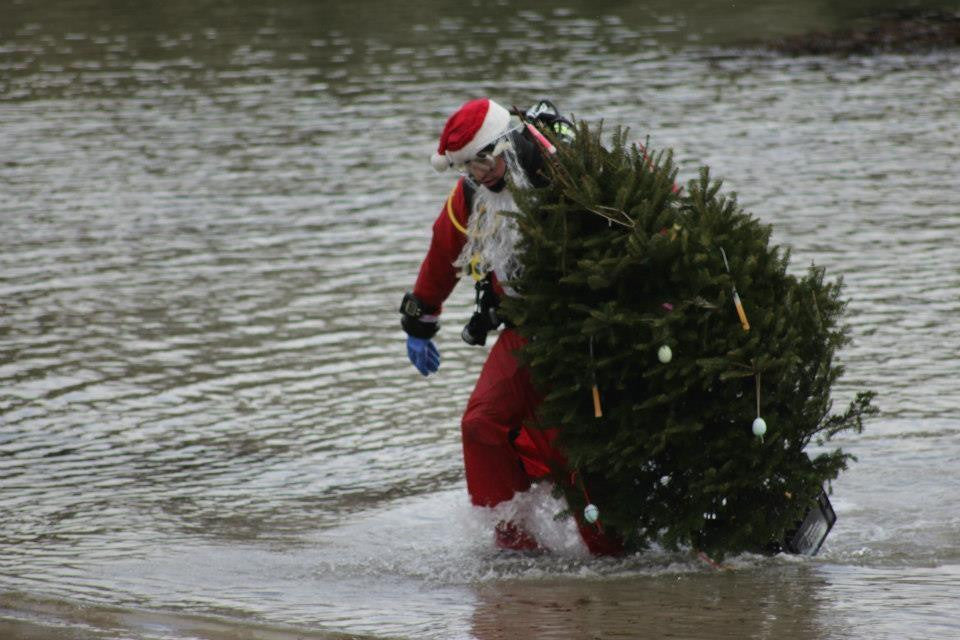 Christmas Tree Dive 2017