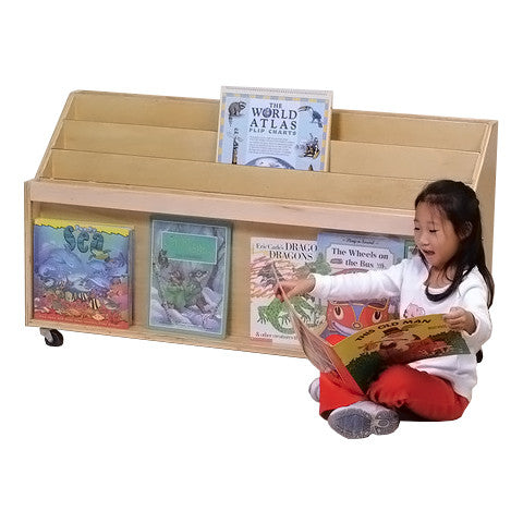 Mobile Clear View Big Book Display Unit