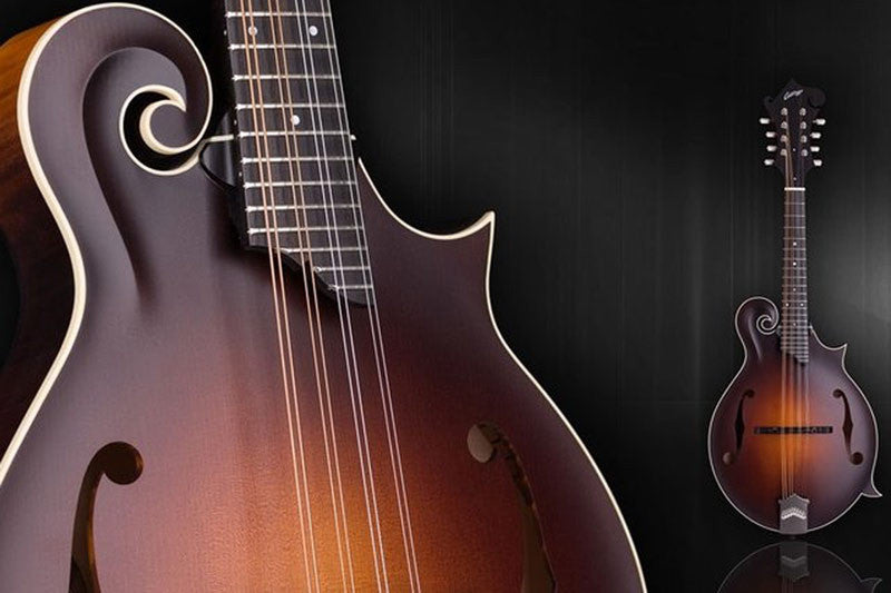 Collings Mandolins