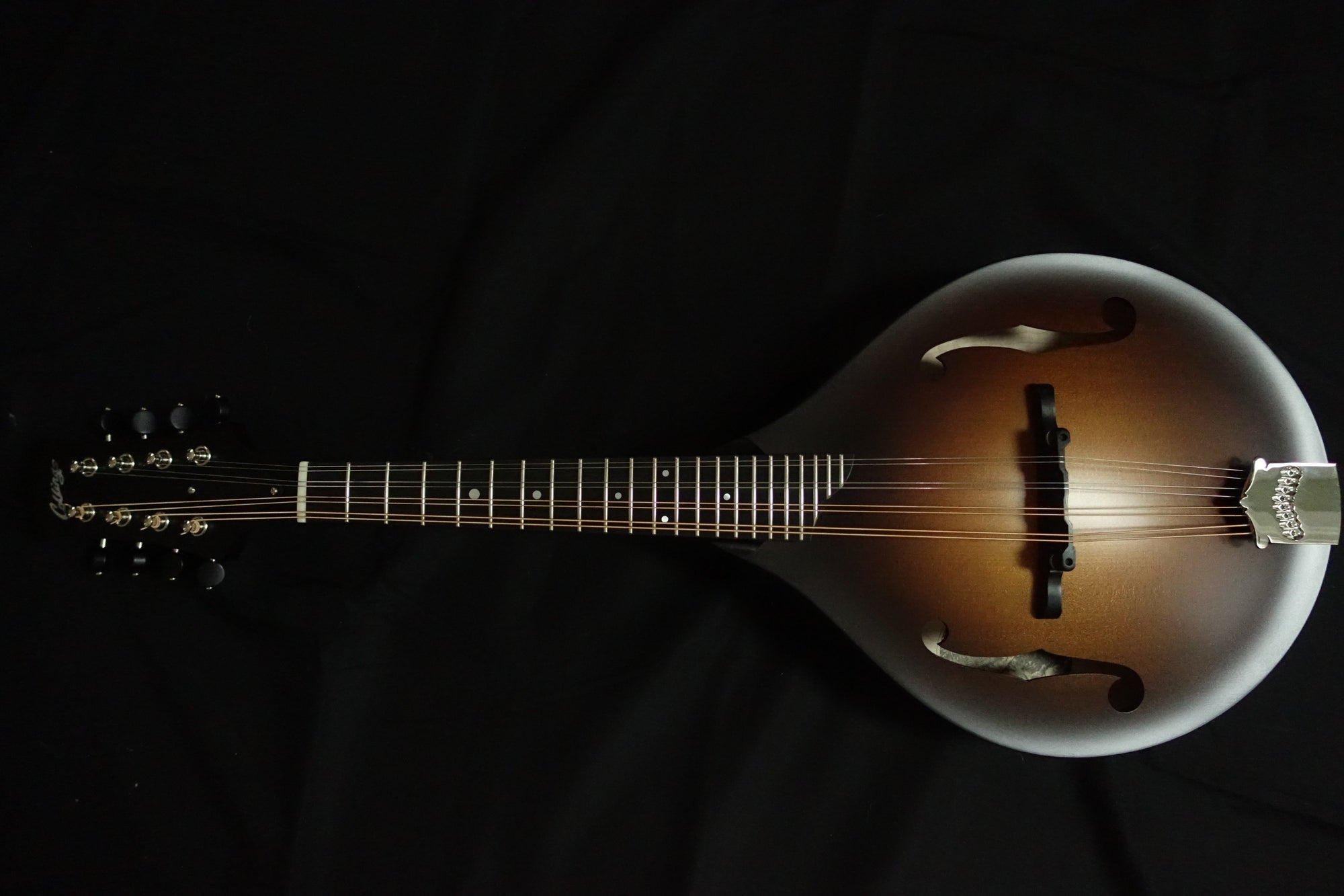 Collings MT Mandolin - Banjo Studio