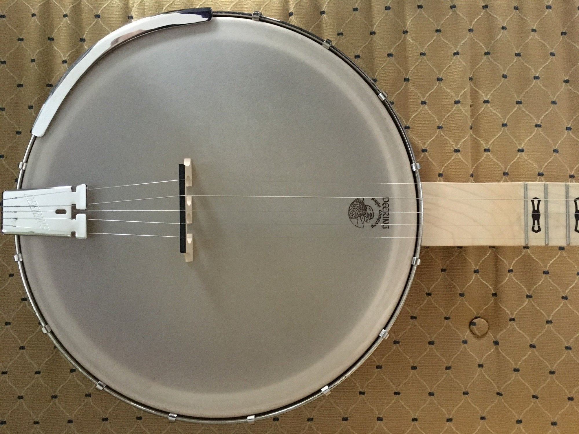 Deering Goodtime Americana with Scooped Neck - Banjo Studio