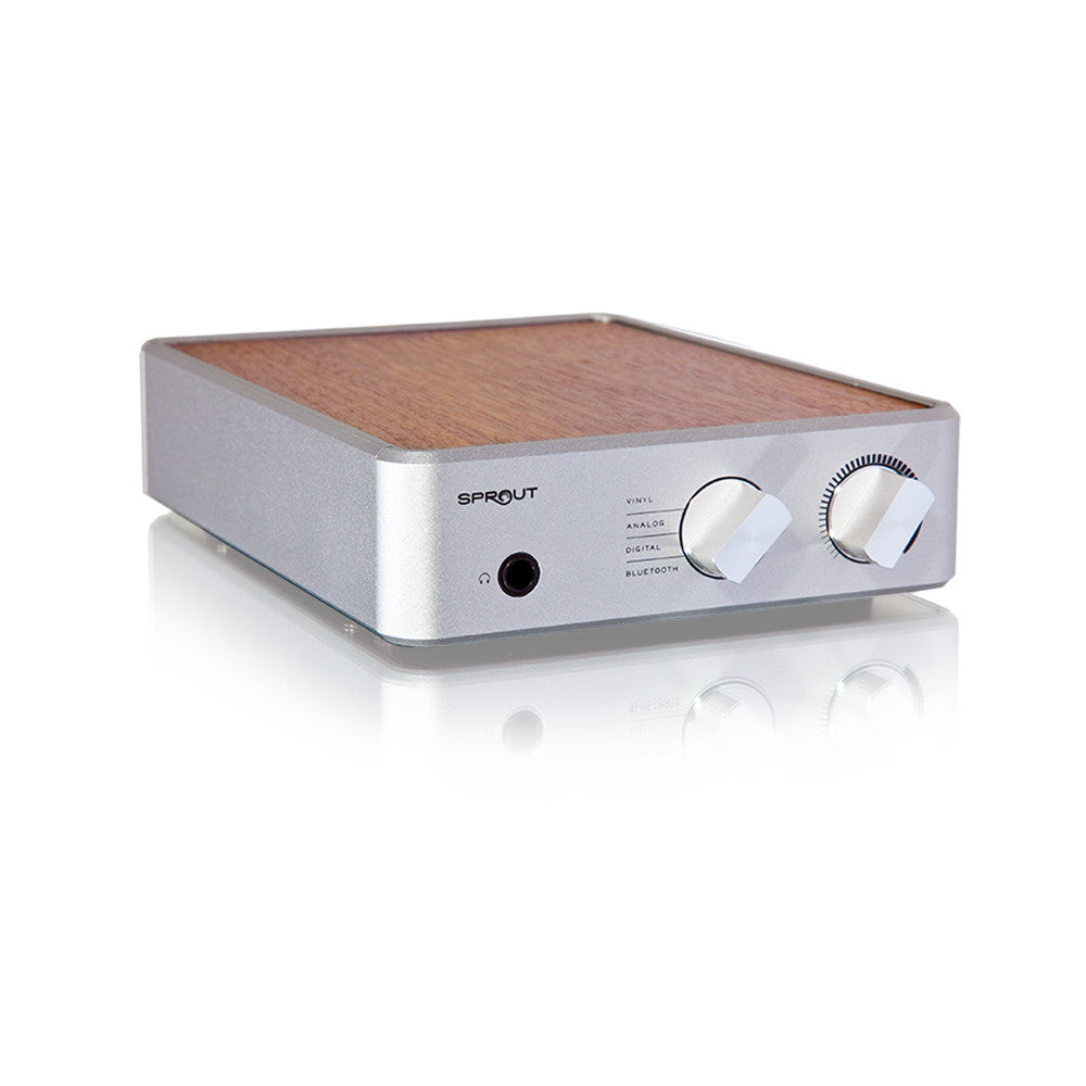 Sprout Integrated Amp
