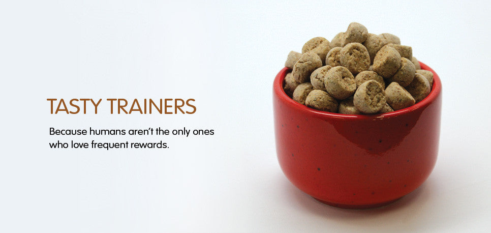 Do it yourself DIY trainer treats for your pet.