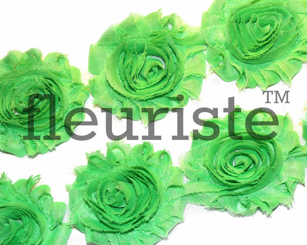 Solid Shabby Rose Trim-Lime Green