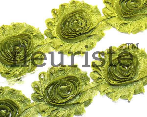Solid Shabby Rose Trim-Olive Green