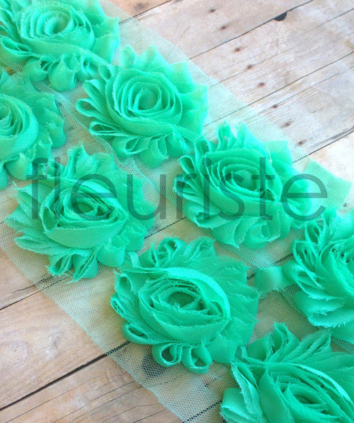 Solid Shabby Rose Trim-Aqua Green