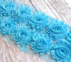 Solid Shabby Rose Trim-Light Turquoise