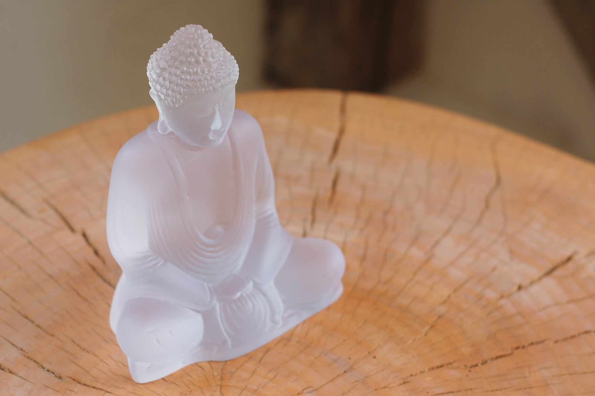 Priti Lucent Buddha: Coming Soon