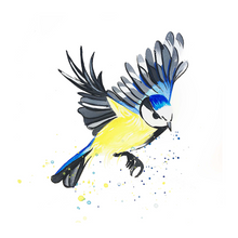 Load image into Gallery viewer, Limited edition print  - Blue Tit in flight
