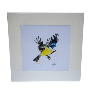 Limited edition print  - Blue Tit in flight