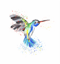 Load image into Gallery viewer, Hummingbird Print