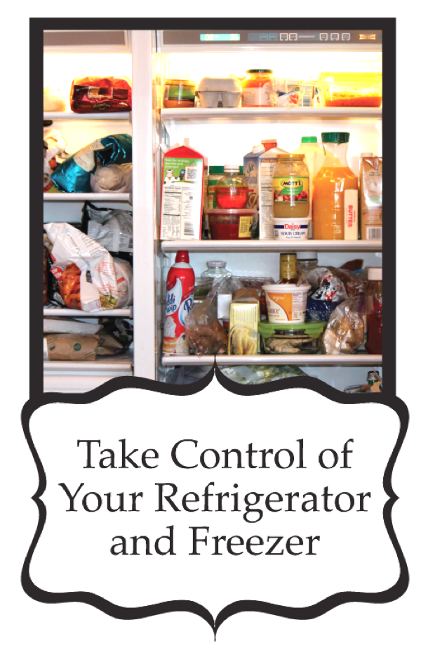 Take Control of your Refrigerator! Digital Book
