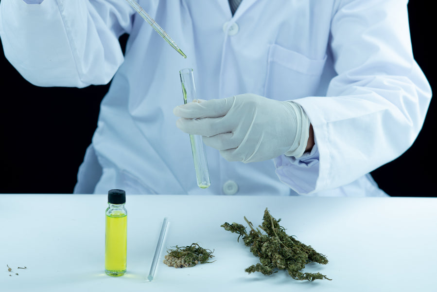 Could Cannabidiol Oil Help Alleviate Chronic Neuropathic Pain?