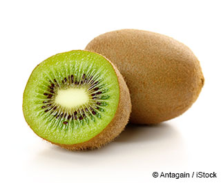 KIWI FRUIT, pack 4