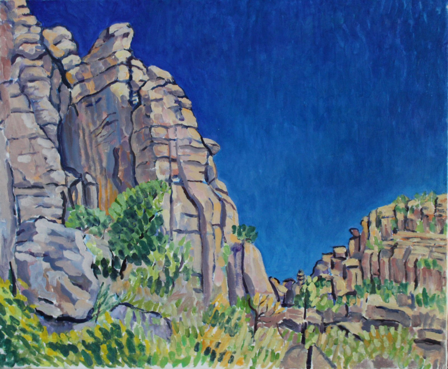 'at the chiricahuas 2', plein air painting 30