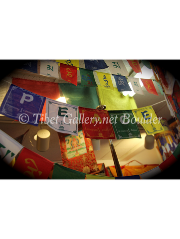 Prayer Flag (TGPF5)