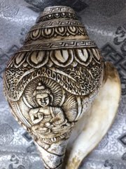 Conch Shell with 5 Buddha Family(TGCS 1)