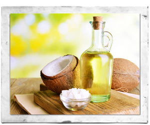 6 Reasons Why You Should Use Coconut Oil on Your Skin