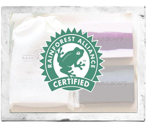 What Does It Mean to be Rainforest Alliance Certified?