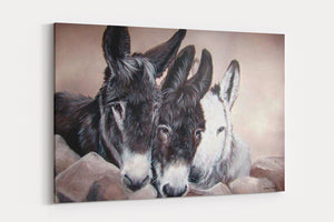 3 wise donkeys A4 Canvas Print