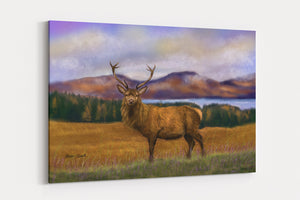 A4 Canvas Print Prince of the Highlands