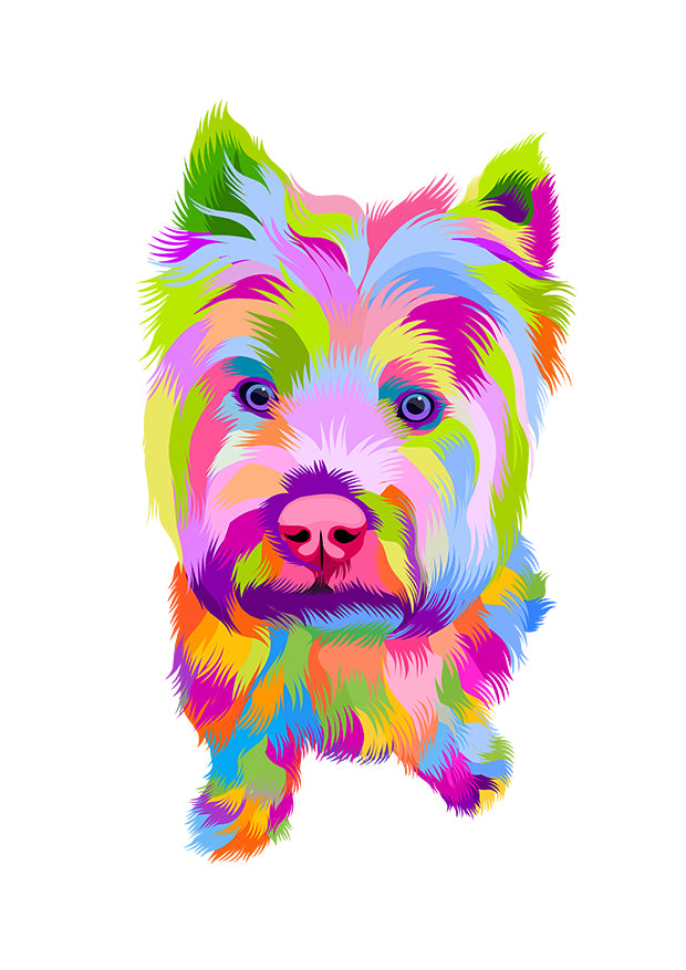 Colour Splash Pet Portrait