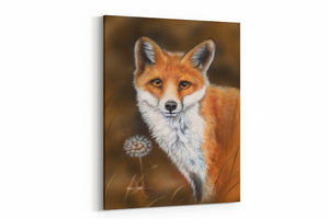 fox and the dandelion A4 Canvas Print