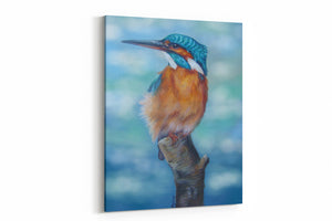 kingfisher blues A4 Canvas Print