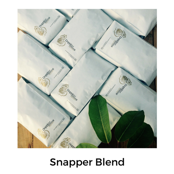 Snapper Rocks - Smooth, clean, medium-bodied blend.