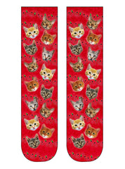 Holiday Kitty Gift Set