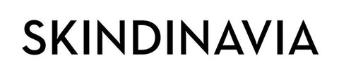 Image result for skindinavia logo