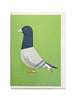 Pigeon A6 Greeting Card